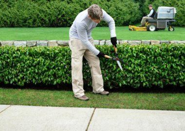 Gardener Luxembourg • Handyman Luxembourg
